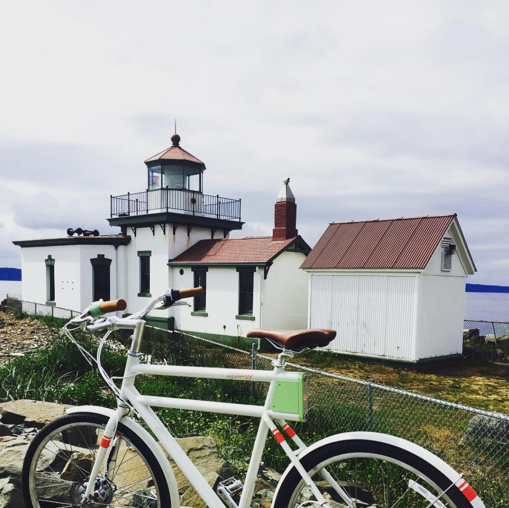 Electric Bicycle Tour